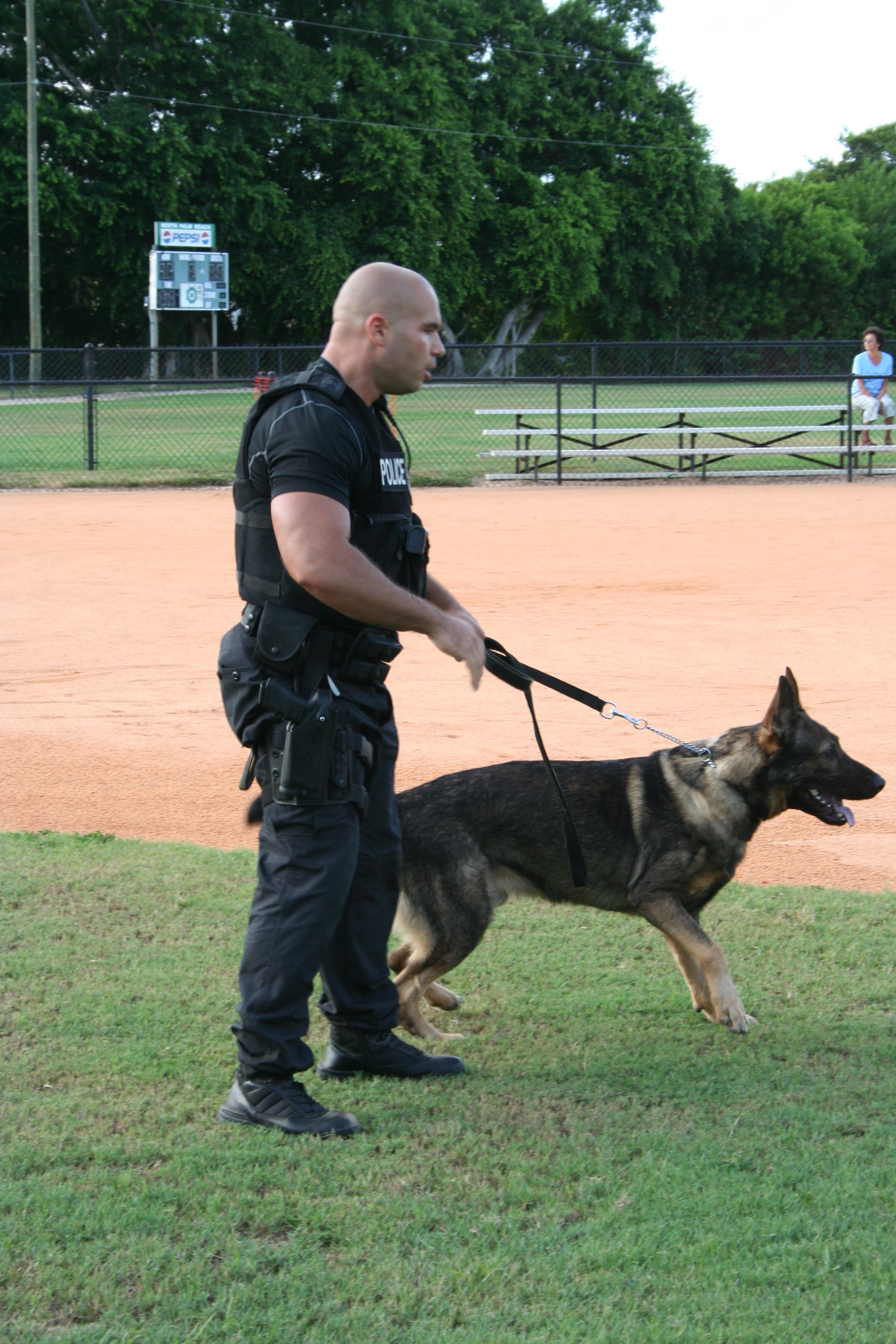K-9 Officer Cole is training with his handler