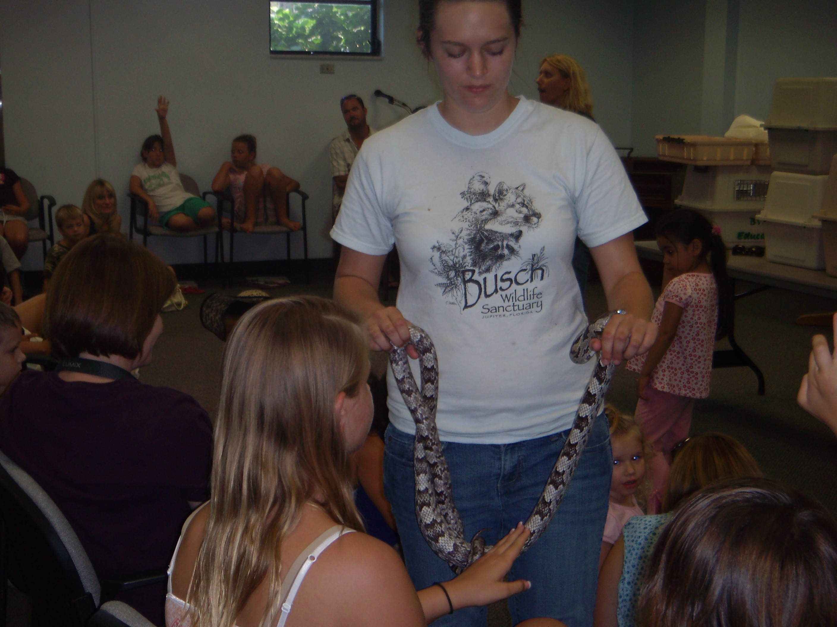 A girl touches a snake brought to the talks