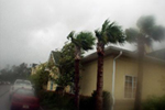 Hurricane Hitting Trees and House